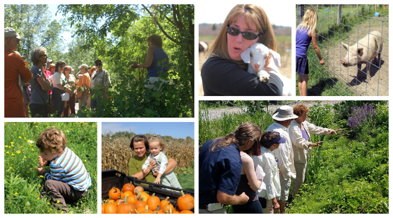 Collage of photos taken during many different farm tours throughout the years